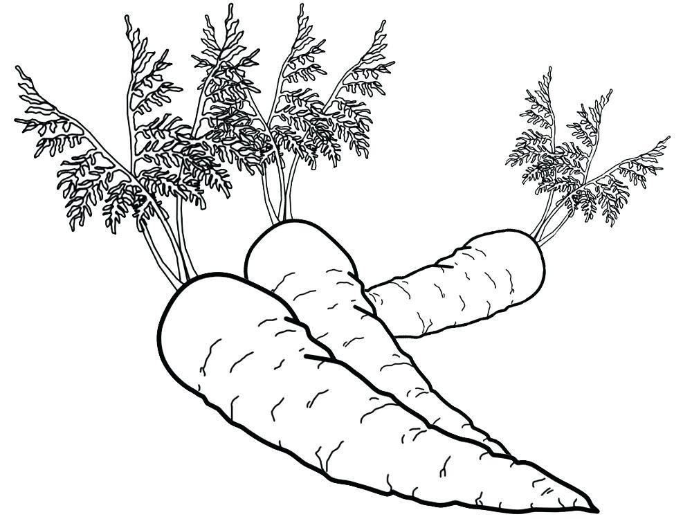 Imagenes Animadas Para Colorear: Dibujos De Frutas Y Verduras Para Colorear 🥉 Tienda Online